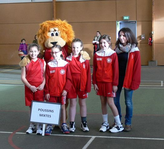 basket 2017-2018